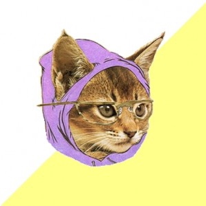 cause hipster kitty says so # 1