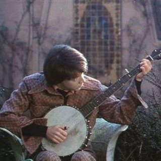 I've Got a Fever and the Only Cure is More Banjo