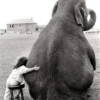 The sounds you'll never speak