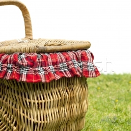 Picnic in the Park for a Third Date