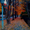 Autumn Ambience