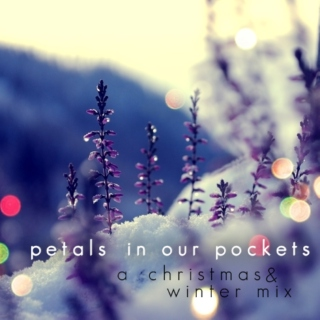 petals in our pockets