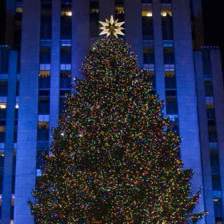 under the rockefeller tree