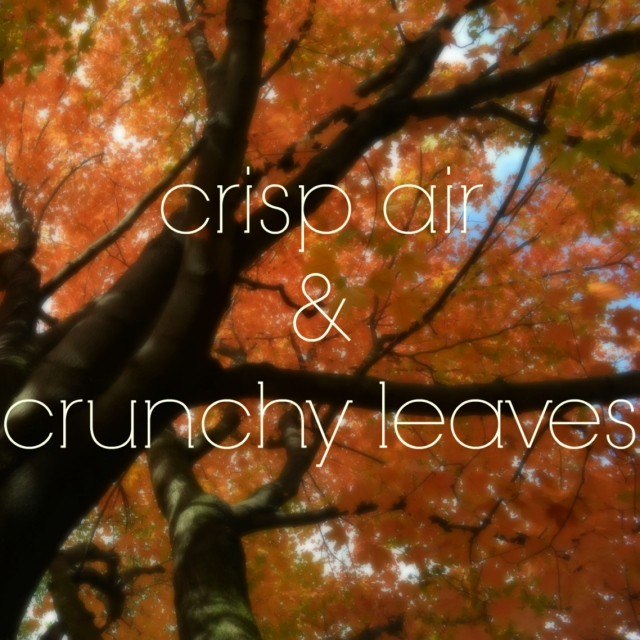 crisp air and crunchy leaves