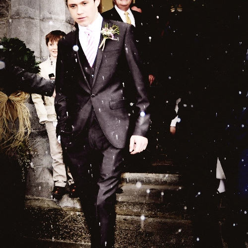 Wedding Day With Niall