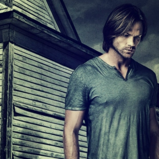falling in love with sam winchester