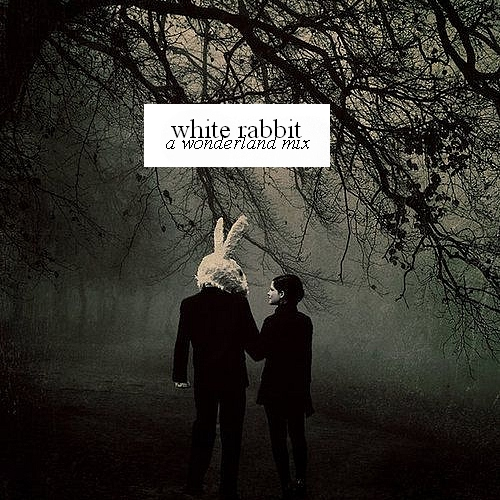 how to play white rabbit