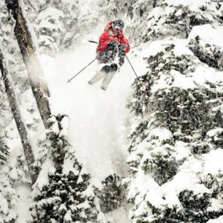 Powder Daze