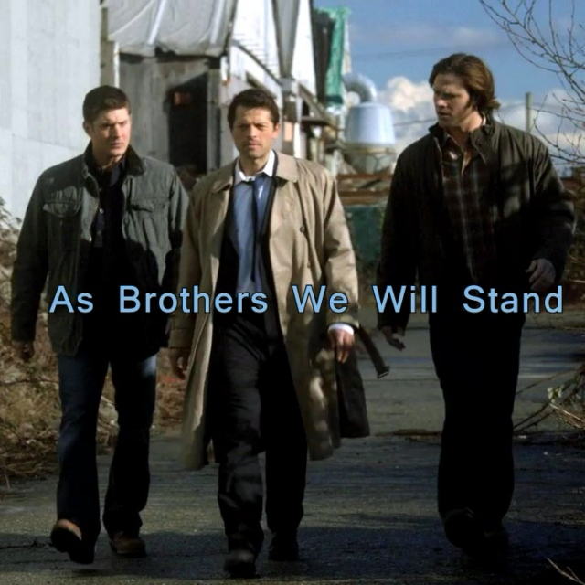 As Brothers We Will Stand