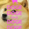 in no particular doge