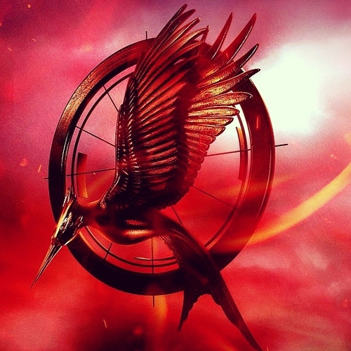 ➳catching fire➳