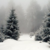 Happy Wintery good time mix
