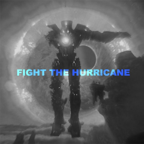 FIGHT THE HURRICANE (and win)