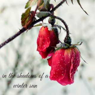 In the Shadows of a Winter Sun