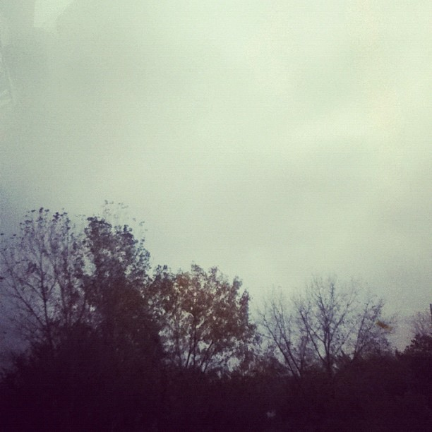 Nothing better than a rainy day. <3