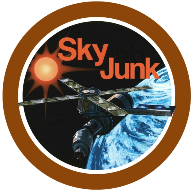 The Frozen Age of Space Junk