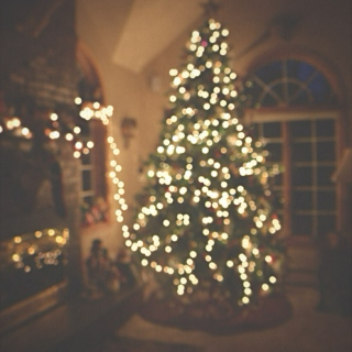 the most wonderful time of the year ❅