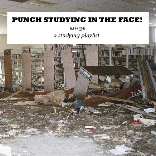PUNCH STUDYING IN THE FACE!