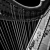 Harp sessions 2.