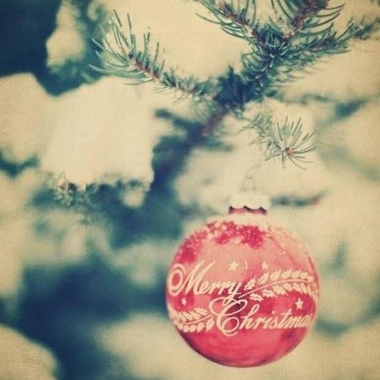 ❅Classic Christmas Songs❅