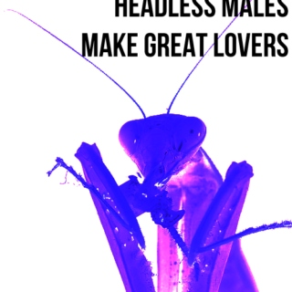 headless males make great lovers