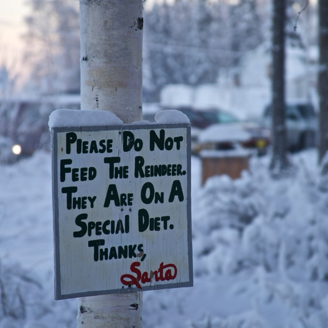 Don't Feed the Reindeer!