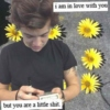 ❀A Day With Harry❀