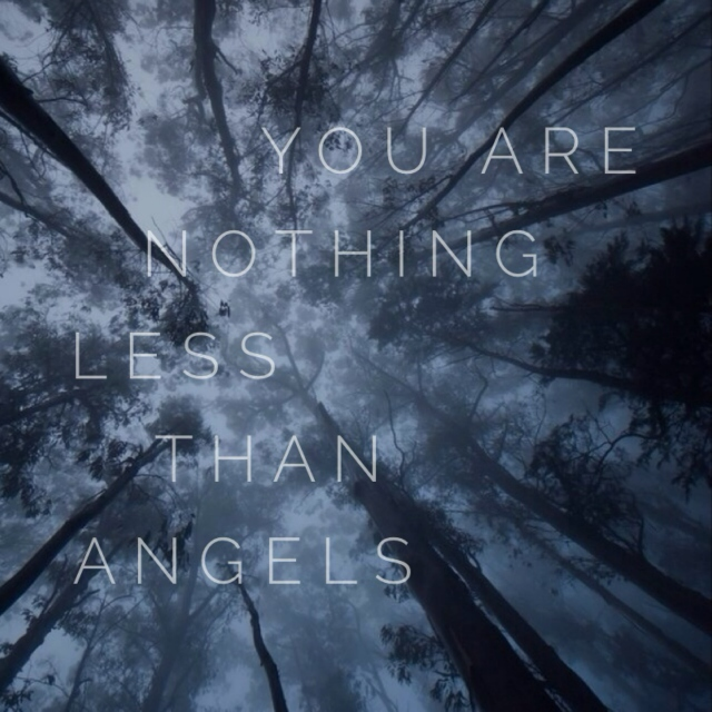 You are nothing less than angels