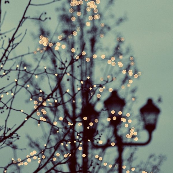 The Warmth of Winter
