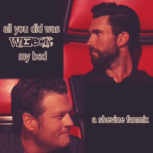 all you did was wreck my bed; a shevine fanmix