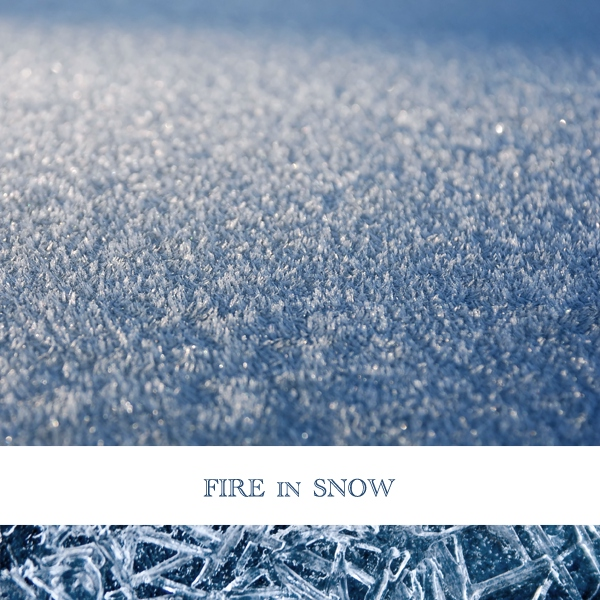 Fire in Snow