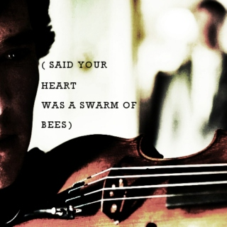 said your heart was a swarm of bees