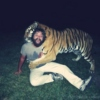 parties with tigers