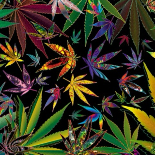 Weed Chillin' : Dub Version