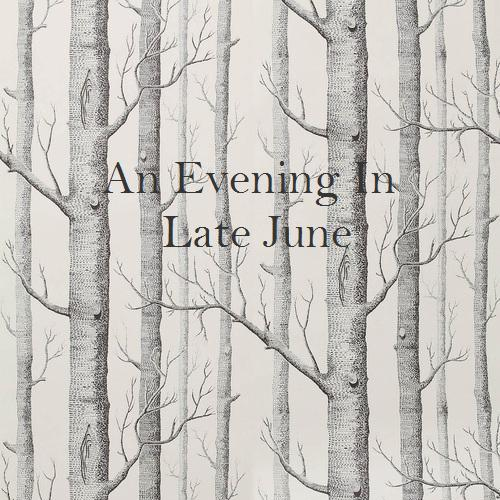 An Evening in Late June