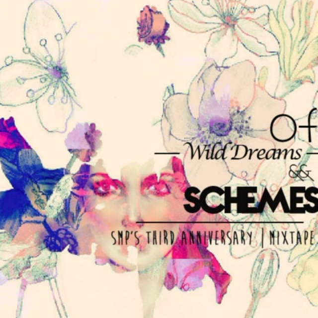 Of Wild Dreams and Schemes