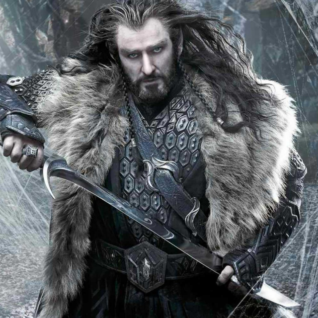 Thorin Oakenshield // Cold as it Gets