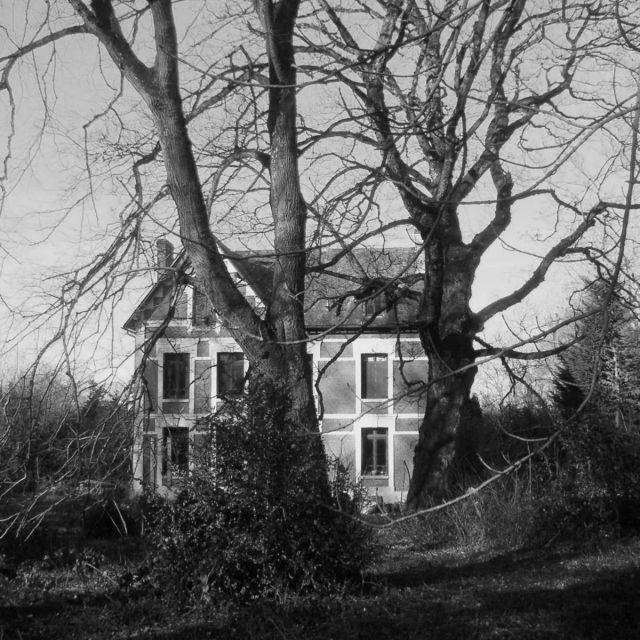 Return To The Witch House
