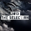 2013: The Selection