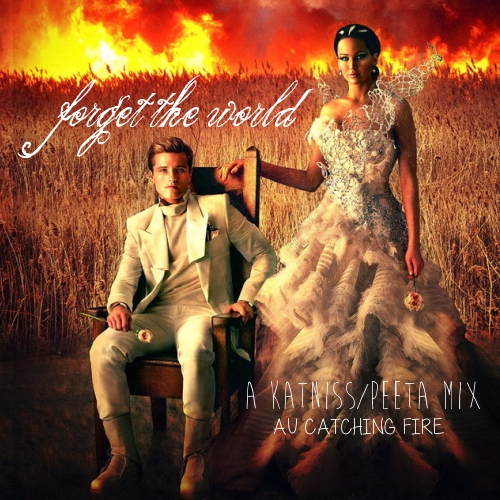 forget the world - an au catching fire everlark mix