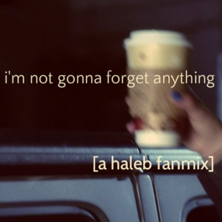 i'm not gonna forget anything [a haleb fanmix]
