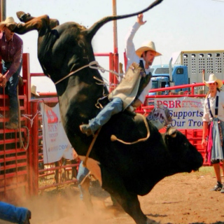 They Call the Thing Rodeo
