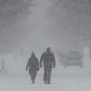 Songs for a Snowstorm