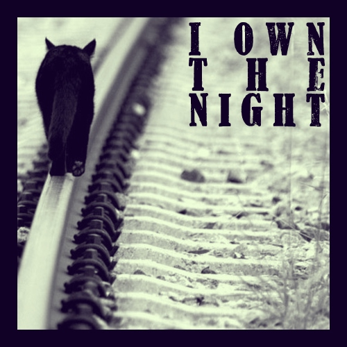 I Own The Night
