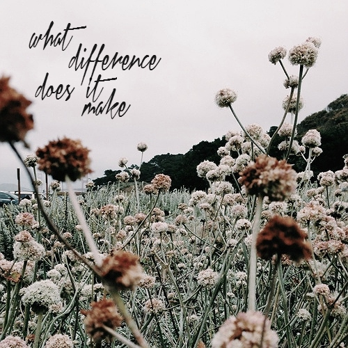 what difference does it make;