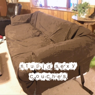 Stupid Sexy Couches