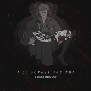 I'll Forget You Not