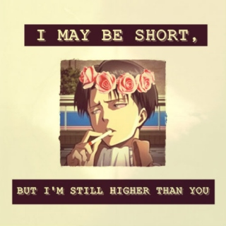 I may be short, but I'm still higher than you