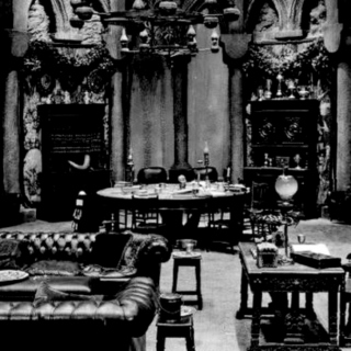 studying:  slytherin common room