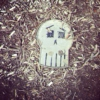 The Skull on the Ground